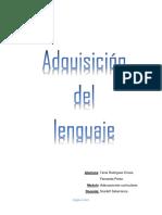 INFORME ADQUISICION DEL LENGUAJE.pdf