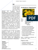 Dicotyledoneae