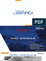 2 MATRIZ EXTRACELULAR-F (2)
