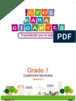 LIBRO 1 GUIA SEMANAL 6