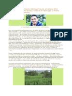 Augmentation de la production des légumineuses alimentaires entre opportunités et défis.docx