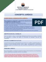 Minuta Concepto Jurídico 2.docx