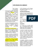 INFECCIÓN URINARIA EN EL EMBARAZO ensayo