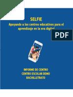 Selfie Report Demo Es