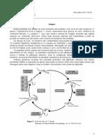 biogeo11_teste3