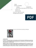 ESTUDIO ANATOMICO Y MORFOLOGICO DEL BESITO.odt
