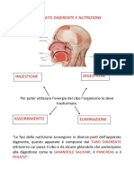 APPARATO DIGERENTE E NUTRIZIONE.docx