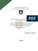 Tesis_Los_Derechos_Laborales_en_Doble_Regulacion.Image.Marked.pdf