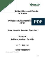 Principios fundamentales de la ONU.docx