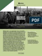 Budrus - Ficha Documental