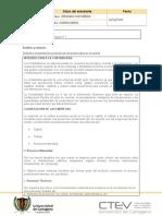 Plantilla protocolo individual contabilidad