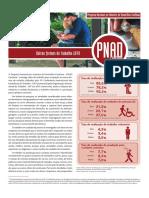 IBGE. Outras formas de trabalho.pdf
