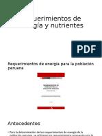 Requerimientos de energía y nutrientes 2 (3)