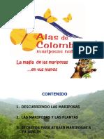 TALLER JARDINES Y MARIPOSAS ALAS DE COLOMBIA.pdf