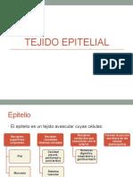 2 - Tejido Epitelial.pptx