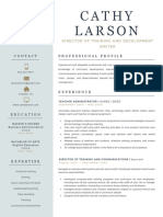 cathy larson resume 042120