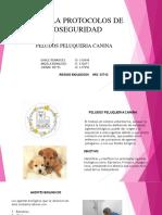 CARTILLA DE PROTOCOLOS DE BIOSEGURIDAD.pptx.pdf