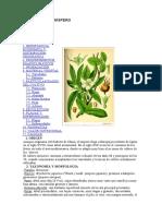 Arboricultura - Cultivo Del Níspero
