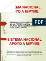 SISTEMA NACIONAL DE APOYO A PYME (1)