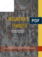 INFORME-TRANSITO-PEATONES.pdf