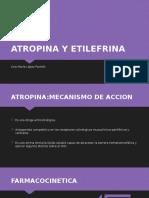 Atropina y etilenefrina.pptx