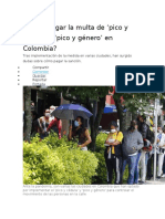 Como pagar la multa de pico y cédula y pico y género en Colombia