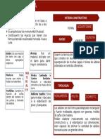 Resumen Mochica.docx.docx