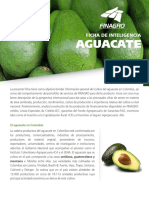 ficha_aguacate_version_ii.pdf