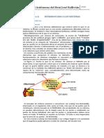 Texto Oficial Ing Sis 2020.docx