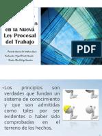 Ramiro+Principios+NLPT++170612