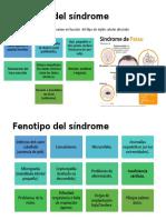 Fenotipo del síndrome