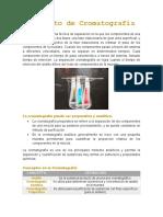 Análisis-Concepto de Cromatografía