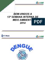 Dengue - Semana de Meio Ambiente - 2014.ppt