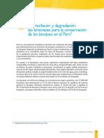 s3-3-comprension-lectora.pdf