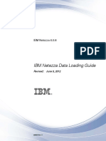 Netezza Data Loading Guide.pdf