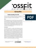 CF Manual v4 Lvl1Cert