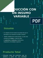 Producción con un insumo variable (economía)