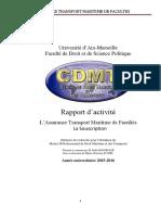 rapport d'activité Rafik Bousselmi.pdf