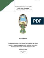 caracterizacion meliponicultura caranavi