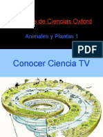 animalesyplantas01-130303090840-phpapp01