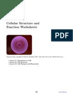 Cell-Worksheet