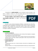 Ficha informativa_Canto_VI_-_Tempestade_-_estrutura__sintese_simbolismo