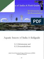 Indian Aqua Insects