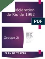 DECLARATION DE RIO