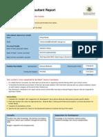 Consultant Report WFaisal