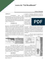 val_brasiliensis_reporte5rea_artigo04