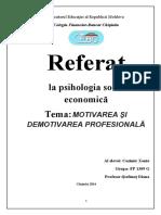 Motivarea si demotivarea profesionala.docx