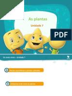 Os seres vivos - As plantas