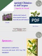 Vittorio Elia - Nuove proprietà fisico-chimiche dell'acqua