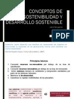 Conceptos de sostenibilidad y desarrollo sostenible